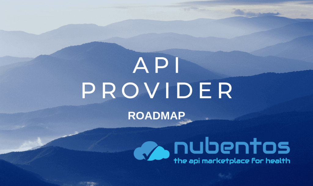 roadmap for the api provider