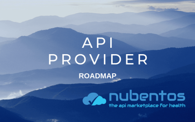Roadmap for the API Provider