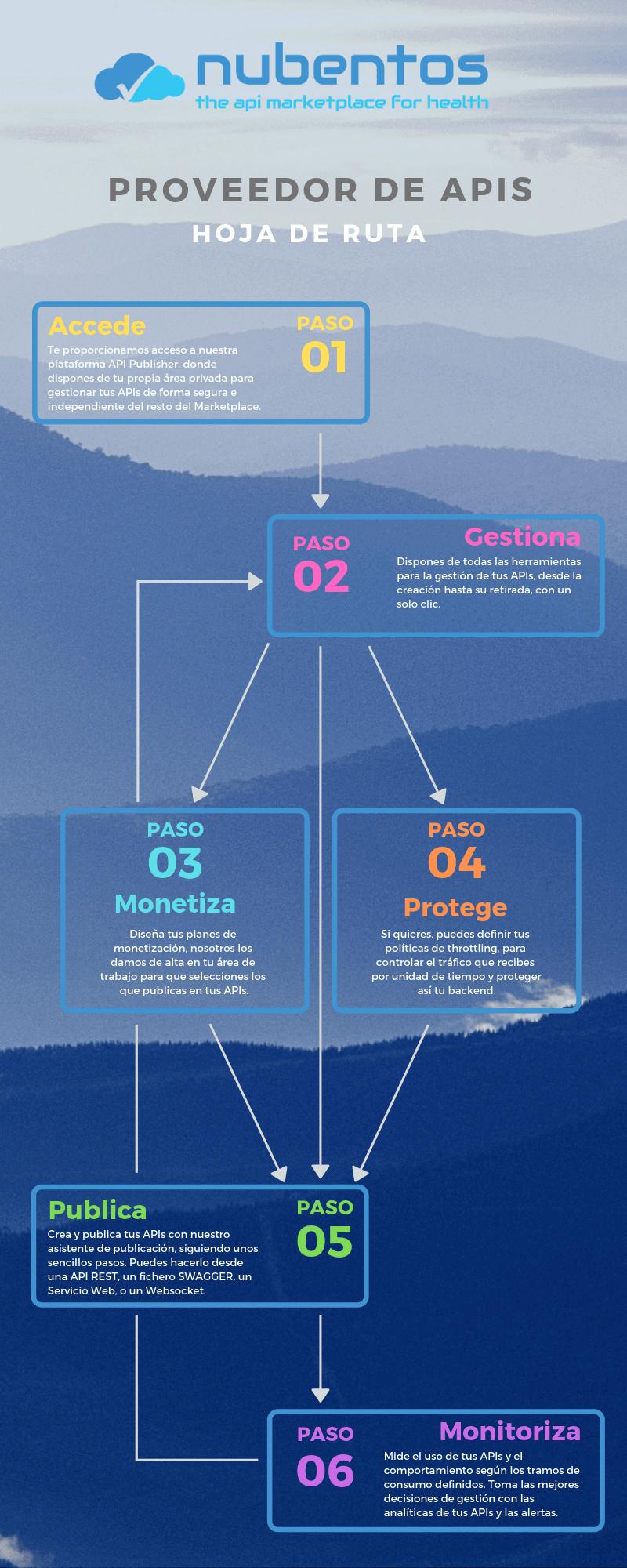 infografia hoja de ruta para el proveedor de apis